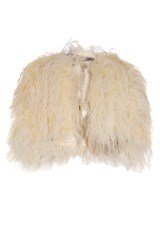Ostrich Feather Cape